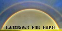 Rainbows for Noah