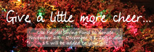 paypal-giving-fund-1-campaign-2016